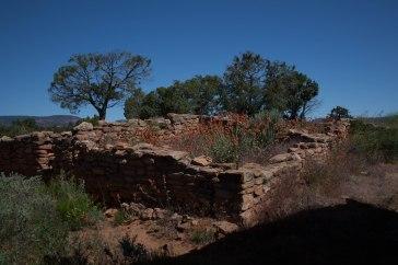 Mule Wash Ruins